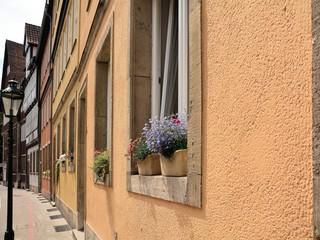 Blumen im Fenster eines Hauses