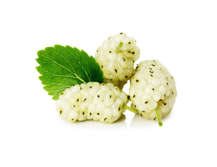 white mulberry with leaf on white background