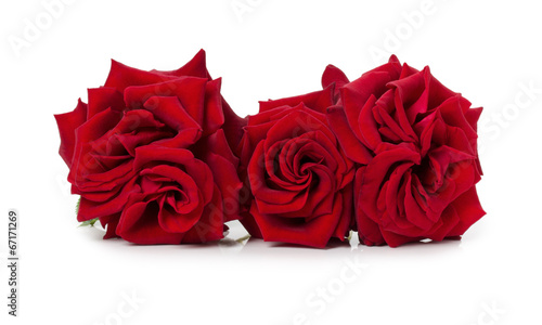 canvas print picture bouquet of beautiful red roses on the white background