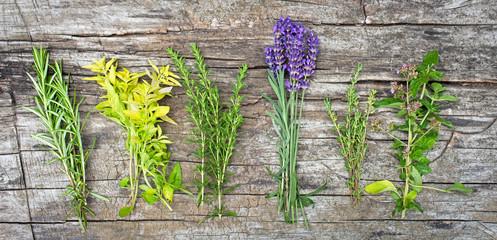 Küchenkräuter (Kräuter der Provence) auf Holzuntergrund