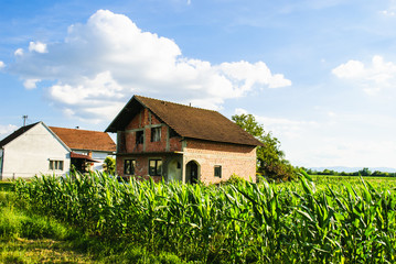 Farmland & Farmhouse