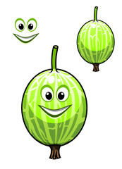 Happy smiling fresh Chinese gooseberry