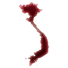 A pool of blood (or wine) that formed the shape of Vietnam. (ser