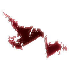 A pool of blood (or wine) that formed the shape of Newfoundland.