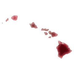 A pool of blood (or wine) that formed the shape of Hawaii. (seri