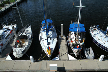 Sailboats docked at the marina