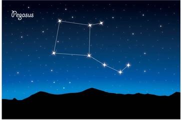 Constellation Pegasus