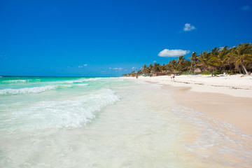 Untouched tropical beach in Tulum Mexico