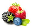 Raspberry, Strawberry, Blueberry, Blackberry