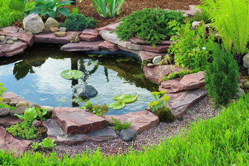 Pond in landscape design.