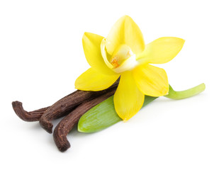 Vanilla pods and orchid flower