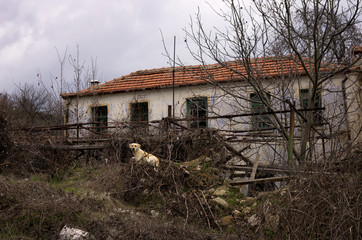 Old and neglected house in Florina, Greece