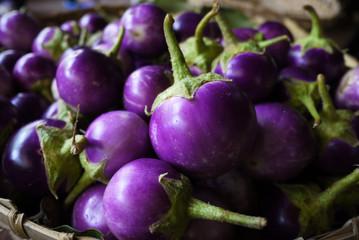 Round purple eggplant