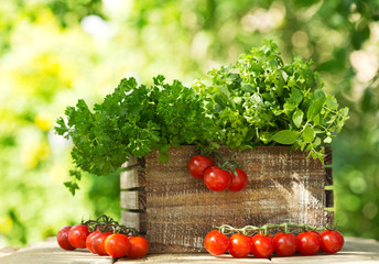 fresh herbs with tomatoes