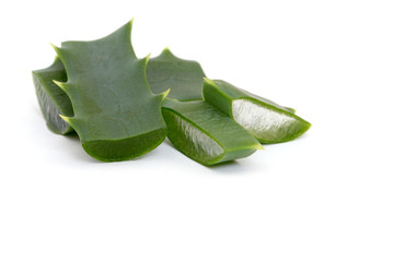 aloe vera fresh leaf. isolated over white