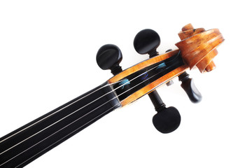 Violin musical instruments