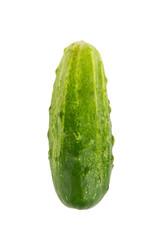 Fresh cucumber close up isolated on white background