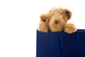 Teddy bear in blue paper bag isolated on white background