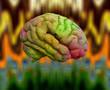 Psychedelic Brain