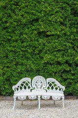 White cast iron chair with the bush Background