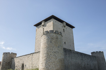 The fortified tower of Mendoza, Vitoria (Spain)