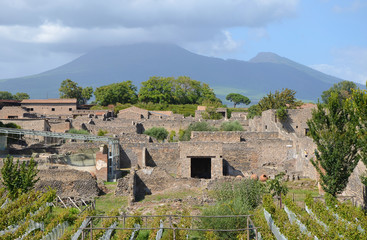 Pompeii and Mount Vesuvius in the background