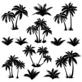 Photo: Tropical palm trees set silhouettes