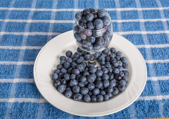 Blueberries in Glass on Plate