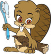 Beaver and toothbrush
