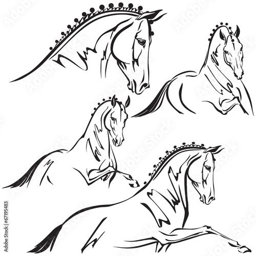 Fototapeta Dressage horses for trailer design