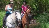 Ride through the countryside