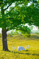 Outdoor in spring, white table