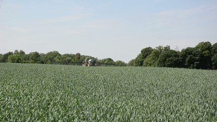 tractor with long black sprays fertilizing large part corn field