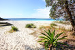 canvas print picture - Greenfields Beach Australia