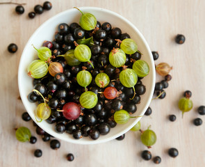 berries of black currant and gooseberry green in a white bowl, t
