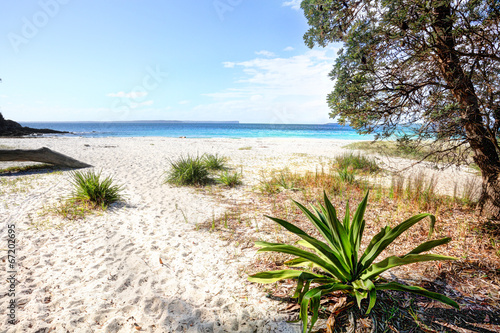 canvas print picture Greenfields Beach Australia