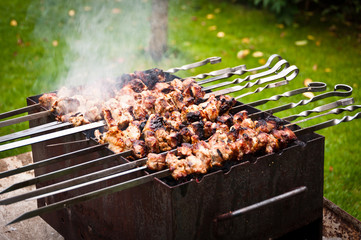 Barbecue in Nature, Fresh Delicious Pork Meat
