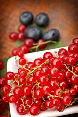 Red currant and cranberry