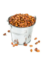 pine nuts in a bucket over white
