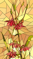 Vector illustration of flowers red columbine.