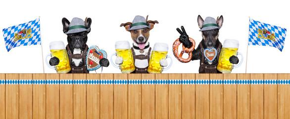 Bavarian dogs