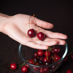 Fresh cherries in woman hands