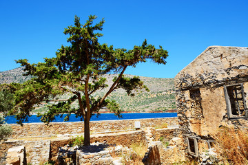 The building and tree on Spinalonga Island, Crete, Greece