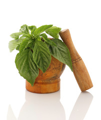 fresh basil in a wooden mortar on white background