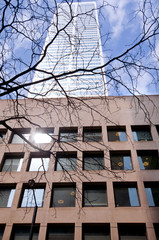 Toronto highrise office building detail