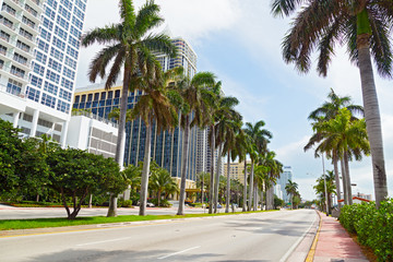 Wide road with tall palms and modern buildings in Miami Beach