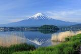 Fototapety 逆さ富士 河口湖にて