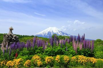 富士とルピナスのある風景