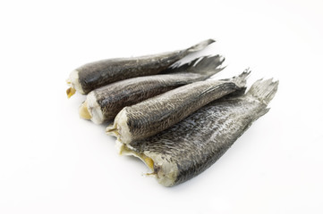 Dried fish isolate on white background