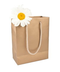 Bag for shopping with daisy flower